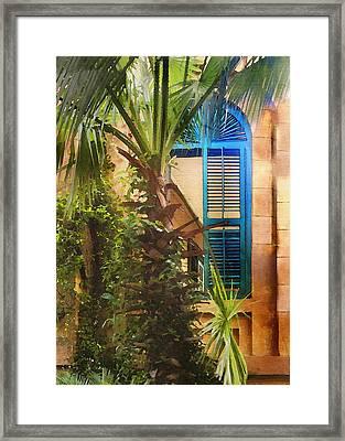 Savannah Window Framed Print