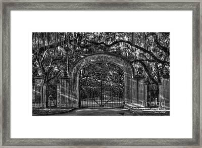 Savannah's Wormsloe Plantation Gate Bw Live Oak Alley Art Framed Print