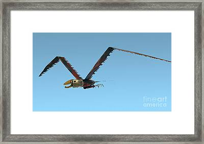 Framed Print featuring the photograph Saw Bird -raptor by Bill Thomson