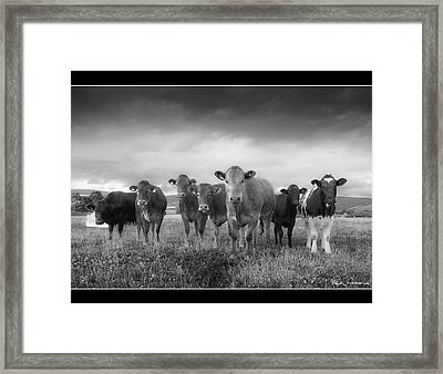 Say Cheese!! Framed Print