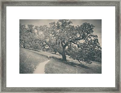 Say You Love Me Again Framed Print