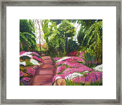 Sayen Path Framed Print