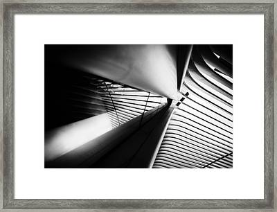 Scale Out Framed Print
