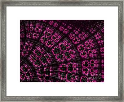 Scallop In Pink And Black Framed Print by John Edwards