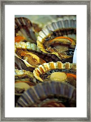 Scallops At Rialto Market In Venice Framed Print by Michael Henderson