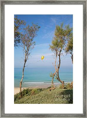 Scapes Of Our Lives #11 Framed Print