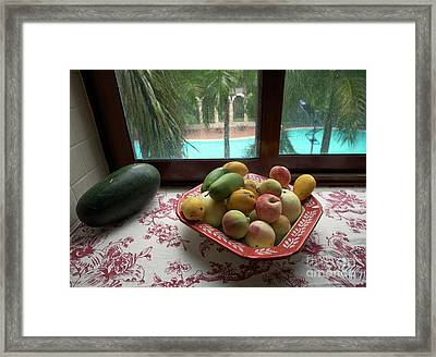 Scapes Of Our Lives #19 Framed Print