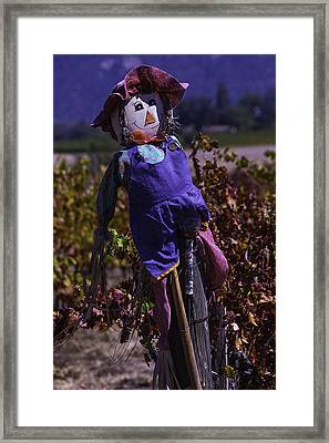 Scarecrow With Floppy Hat Framed Print by Garry Gay