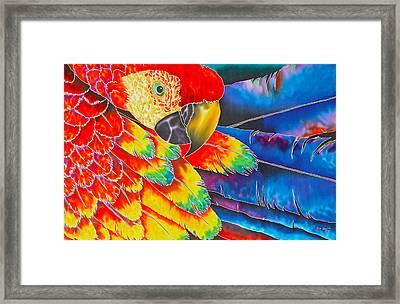 Scarlet Macaw Framed Print by Daniel Jean-Baptiste