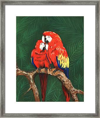 Framed Print featuring the painting Scarlet Macaws by Anastasiya Malakhova