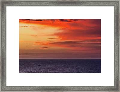 Scarlet Moods Framed Print