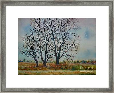 Scary Tree Framed Print by Joyce A Guariglia