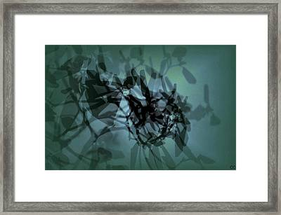 Scattered Shadows Framed Print
