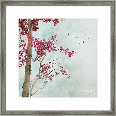 Scattered To The Four Winds Framed Print by Priska Wettstein