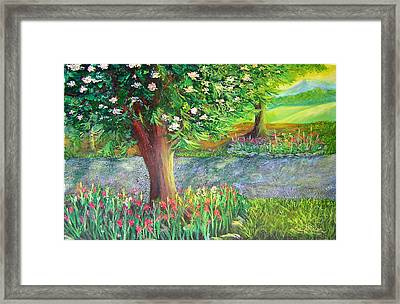Scene Alongside A Gravel Road Framed Print