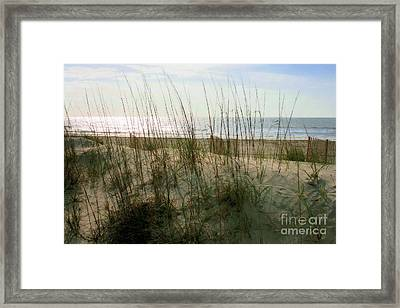 Scene From Hilton Head Island Framed Print
