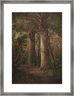 Scene Of Kauri Bush Framed Print