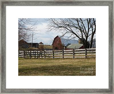 Scene On The Farm Framed Print