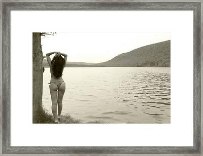 Scenery Framed Print
