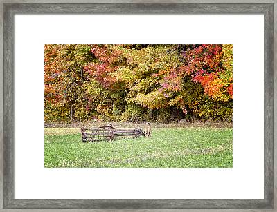 Scenic Amish Landscape 7 Framed Print by SharaLee Art