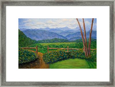 Scenic Overlook Framed Print by Sandy Hemmer