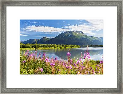 Scenic View Of Fireweed And Portage Framed Print