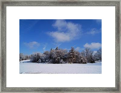 Scenic Winter Framed Print