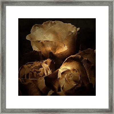 Scent Of A Memory Framed Print by Bonnie Bruno