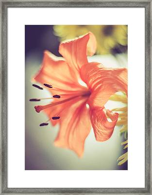 Framed Print featuring the photograph Scent Of Spring by Viviana  Nadowski