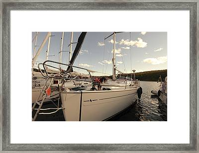 Schnauzer Dog On A Sailing Yacht Framed Print by Ulrich Kunst And Bettina Scheidulin