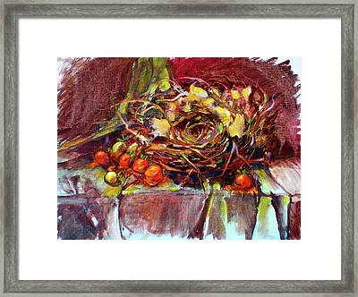 Schmid's Birds Nest Framed Print by Richard Rochkovsky