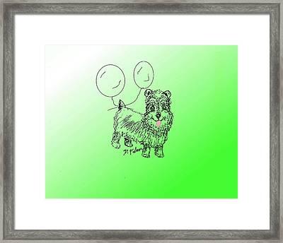 Schnauzer Framed Print