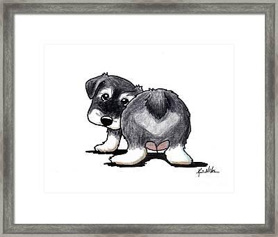 Schnauzer Puppy Framed Print by Kim Niles