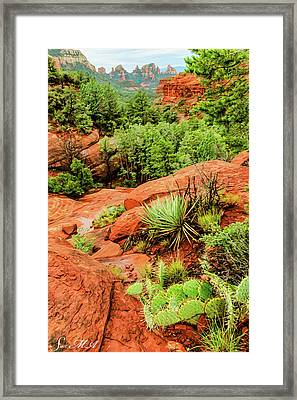 Schnebly Hill 07-057 Framed Print