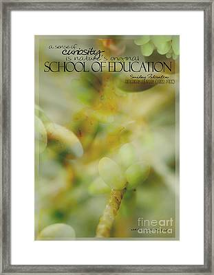 School Of Curiosity 02 Framed Print
