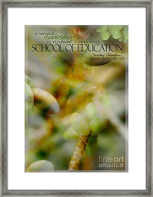 School Of Curiosity 04 Framed Print