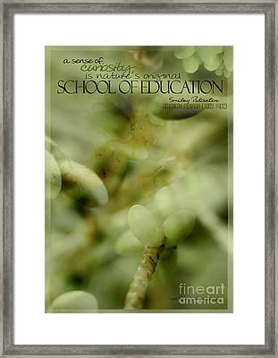 School Of Curiosity 05 Framed Print