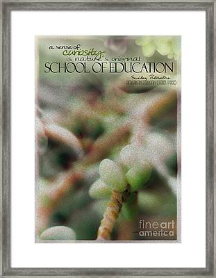 School Of Curiosity 09 Framed Print