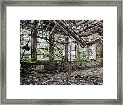Schoolroom Tree Framed Print by Robert Myers