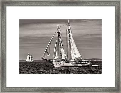 Schooner American Eagle 2012 Framed Print