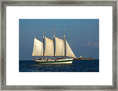 Schooner By Fort Sumter Framed Print