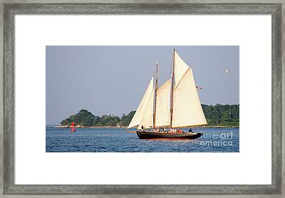 Schooner Cruise, Casco Bay, South Portland, Maine  -86696 Framed Print