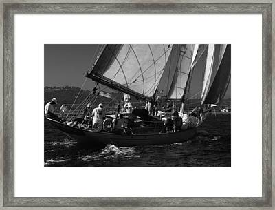 Schooner Dauntless Framed Print