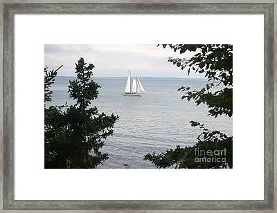 Schooner Framed Print by Dennis Curry