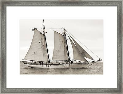 Schooner Harvey Gamage Of Islesboro Maine Framed Print by Dustin K Ryan