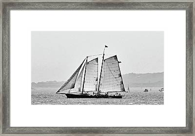 Schooner On New York Harbor No. 3-1 Framed Print by Sandy Taylor