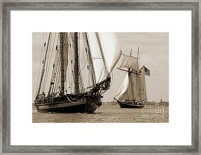 Schooner Pride Of Baltimore And Lynx Framed Print