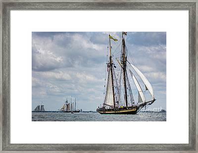 Schooner Pride Of Baltimore Framed Print