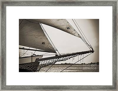 Schooner Pride Tall Ship Charleston Sc Framed Print