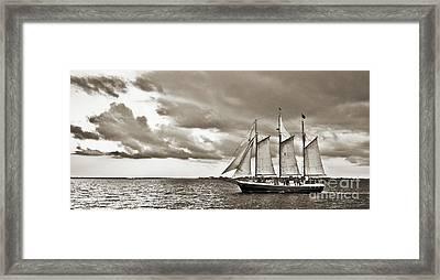 Schooner Pride Tallship Charleston Sc Framed Print